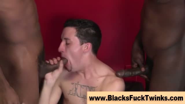 Interracial Loving White Twink Sucks And Fucks