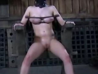 Porno Video of Bound Bitch Jerks Meat