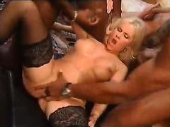Gina Wild    30 Man Gang Bang