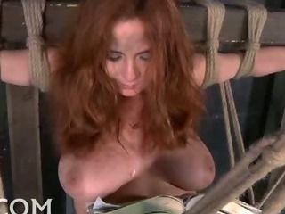 Porno Video of Big Titty Bound Babe