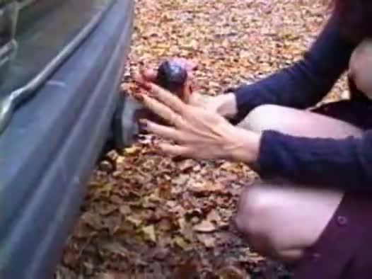 Rebecca mjelde trailer hitch 2