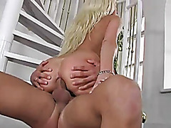 BBQ Hot Stacy Silver Anal Quickie
