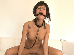 Tractable brunette hair doxy with ball gag Lia M enjoyed hard sex with her excited dong