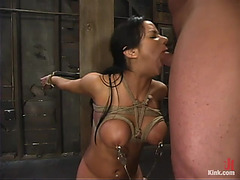 Unrepining Nadia Styles Sucks Large Ramrod And Receives Nailed