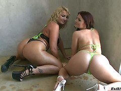 Large titted lesbian babes Flower Tucci and Sophie Dee taking off all cloths from hawt bodies