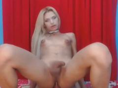 Hot Blond Lady-Boy Rides Her Ally's Hard Wang