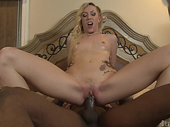 Group-Sex sex with large darksome schlongs for the hawt Maia Davis