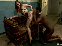 Slaver Maitresse Madeline Ding-Dong Bonks Bound up Dark Man in Femdom Vid