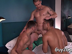 Sexy fellatio to end with anal
