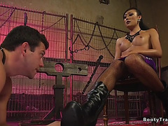 Breasty t-girl anal pounding arrogant boy