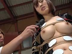 Electro punishment xxxxvi bda081
