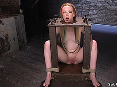 Wet Crack toyed in hogtie suspension
