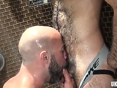 Bushy bear oral-service sex with ejaculation