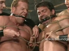 Scott bangs his slave ass all afternoon