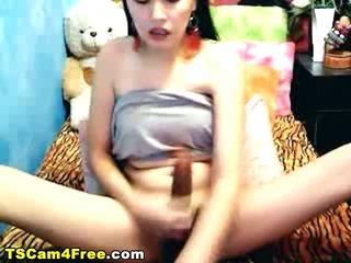 Porno Video of Horny Ladyboy Erect Penis