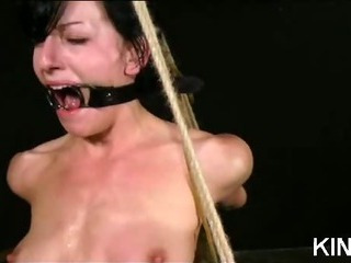 Porno Video of Hot Babe Shaved And Bound